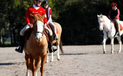 Equestrian Life Magazine: Safety Conference