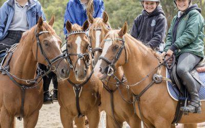 Horses and People Magazine