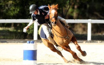 Ride at Equitana: Call for Expressions of Interest
