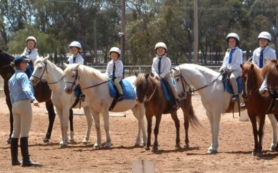 Next Step in the Evolution of Pony Club Coaching