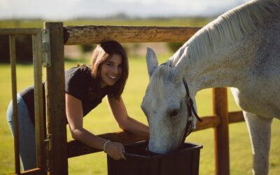 Seven Rules to Make Feeding Your Horse Simple